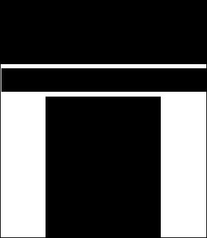Nelson Management Logo